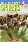 Spiders (Scholastic Reader: Level 2)