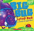 Big Bug Little Bug