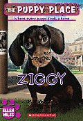 Puppy Place #21: Ziggy Cover