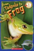 From Tadpole to Frog (Scholastic Reader - Level 1)