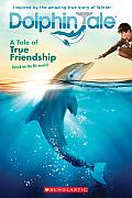 Dolphin Tale A Tale of True Friendship