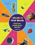 Spanish First Words Primeras palabras en espanol Bilingual