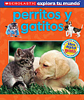 Scholastic Explora Tu Mundo: Perritos y Gatitos: (Spanish Language Edition of Scholastic Discover More: Puppies and Kittens) (Scholastic Explora Tu Mundo)