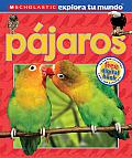Scholastic Explora Tu Mundo: Pajaros: (Spanish Language Edition of Scholastic Discover More: Birds) (Scholastic Explora Tu Mundo)