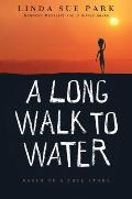 Long Walk to Water Based on a True Story