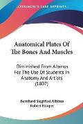 Anatomical Plates of the Bones and Muscles: Diminished from Albinus for the Use of Students in Anatomy and Artists (1807)
