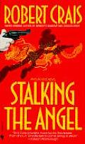 Stalking the Angel Cover