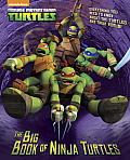 Big Book of Ninja Turtles Teenage Mutant Ninja Turtles