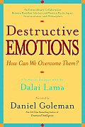 Destructive Emotions How Can We Overcome Them A Scientific Dialogue with the Dalai Lama