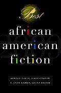 Best African American Fiction (Best African American Fiction)