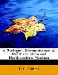 A Geological Reconnaissance In Northern Idaho & Northwestern Montana by F. C. Calkins