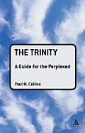 Trinity: A Guide for the Perplexed (Guides for the Perplexed)