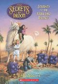 The Secrets of Droon #02: Journey to the Volcano Palace Cover