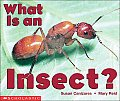 What Is An Insect Science Emergent Reade