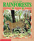 Life in the Rainforests Cover