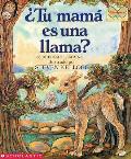 Tu Mama Es Una Llama? / Is Your Mama a Llama?