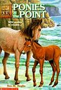 Animal Ark 10 Ponies At The Point