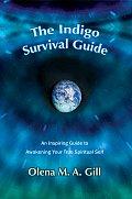 The Indigo Survival Guide