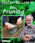 Best Pruning