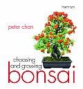 Choosing & Growing Bonsai