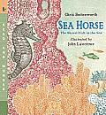 Sea Horse: The Shyest Fish in the Sea (Read and Wonder)
