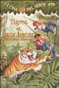 Tigres al Anochecer = Tigers at Twilight