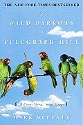 Wild Parrots Of Telegraph Hill A Love St