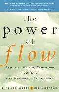 Power of Flow Practical Ways to Transform Your Life with Meaningful Coincidence