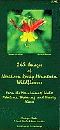 265 Images of Northern Rocky Mountain Wildflowers from the Mountains of Idaho Montana Wyoming & Nearby Places