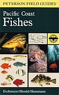 Field Guide to Pacific Coast Fishes North America