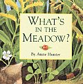 Whats In The Meadow
