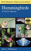 Hummingbirds of North America (Peterson Field Guides)