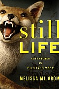 Still Life Adventures in Taxidermy