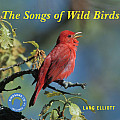 The Songs of Wild Birds with CD (Audio)