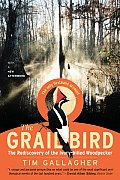 Grail Bird Rediscovery of the Ivory Billed Woodpecker