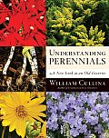 Understanding Perennials: A New Look at an Old Favorite (Frances Tenenbaum Books)