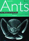 Australian Ants Their Biology & Identifi