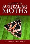 Guide to Australian Moths