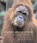 Among Orangutans: Red Apes and the Rise of Human Culture