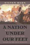 A Nation Under Our Feet: Black Political Struggles in the Rural South from Slavery to the Great Migration