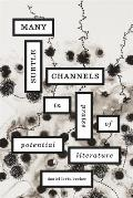 Many Subtle Channels: In Praise of Potential Literature Cover