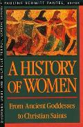 History of Women in the West #01: A History of Women in the West, Volume I: From Ancient Goddesses to Christian Saints