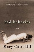 Bad Behavior (Vintage Contemporaries) Cover