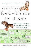 Red Tails in Love A Wildlife Drama in Central Park
