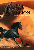 Black Stallion #21: The Young Black Stallion Cover