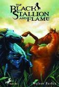 Black Stallion 15 Black Stallion & Flame
