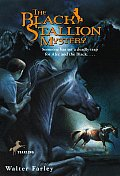 Black Stallion #13: The Black Stallion Mystery