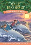 Magic Tree House 09 Dolphins At Daybreak