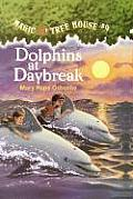 Magic Tree House #09: Dolphins at Daybreak Cover