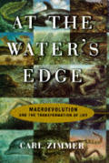 At The Waters Edge Macroevolution & The Transformation of Life